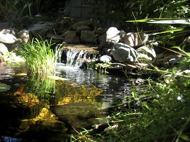 ручей, водоем в саду, ручей +в саду, ручей +в саду +своими руками, ручей +в саду фото, ручей +в саду +своими руками фото