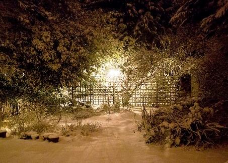 освещение зимнего сада