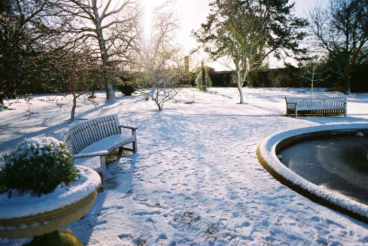 ландшафтный-дизайн-зимой