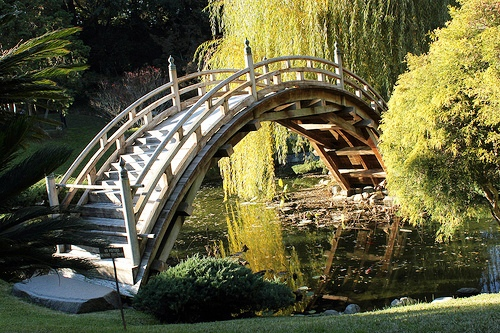 мостик в саду - ландшафтный дизайн фото