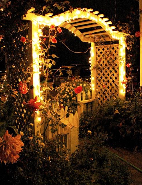 уличное освещение сада, декоративное освещение сада, искусственное освещение сада, освещение +в саду +своими руками, освещение сада фото