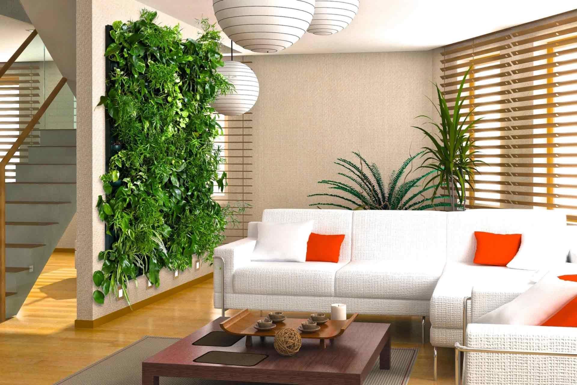 Зелень в своей квартире